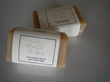Guest Soaps